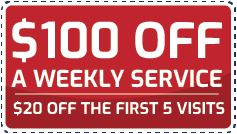 Coupon $100 off weekly service